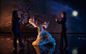 кадры и фото из фильма Фламенко, фламенко