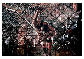кадры и фото из фильма Пила: игра на выживание