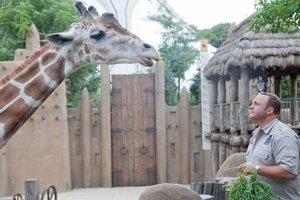 кадры и фото из фильма Мой парень из зоопарка