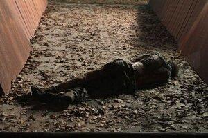 кадры и фото из фильма Философы: Урок выживания