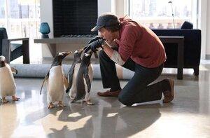 кадры и фото из фильма Пингвины мистера Поппера