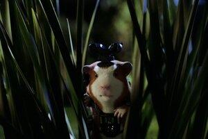 кадры и фото из фильма Миссия Дарвина 3D