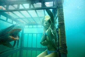 кадры и фото из фильма Челюсти 3D