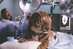 кадры и фото из фильма Доктор Дулиттл