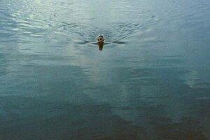 кадры и фото из фильма Окно в лето