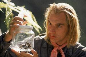 кадры и фото из фильма Боязнь пауков