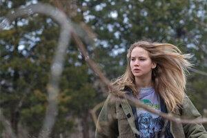 кадры и фото из фильма Зимняя кость