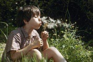 кадры и фото из фильма Сфера колдовства
