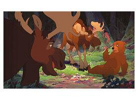 кадры и фото из фильма Братец медвежонок