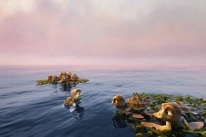 кадры и фото из фильма Шевели ластами 3D