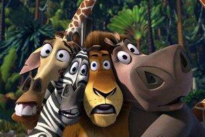 кадры и фото из фильма Мадагаскар
