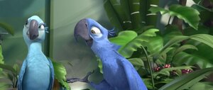 кадры и фото из фильма Рио