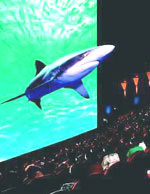 Кино Петербурга: В Санкт-Петербурге появится «город развлечений» и кинотеатр IMAX