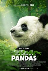 Постер к фильму «Панды»