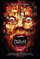 Постер к фильму «Тринадцать привидений»