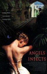 Постер к фильму «Ангелы и насекомые»