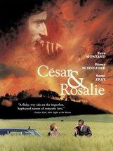 Постер к фильму «Сезар и Розали»