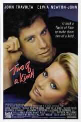 Постер к фильму «Двое в своем роде»
