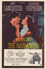 Постер к фильму «Продавец дождя»