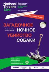Постер к фильму «Загадочное ночное убийство собаки»