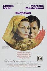 Постер к фильму «Подсолнухи»
