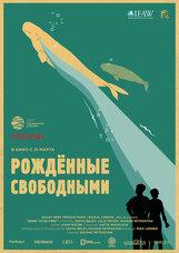 Постер к фильму «Рожденные свободными»