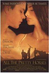 Постер к фильму «Неукротимые сердца»