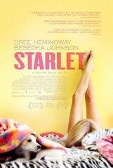 Постер к фильму «Старлетка»