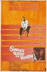 Постер к фильму «Сладкоголосая птица юности»