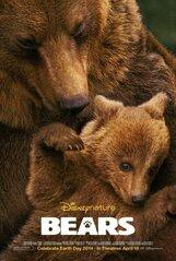 Постер к фильму «Медведи»