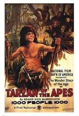 Постер к фильму «Тарзан, приемыш обезьян»