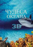 Постер к фильму «Чудеса океана 3D»