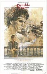 Постер к фильму «Бойцовая рыбка»