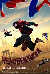 Постер к фильму «Человек-паук: Через вселенные»