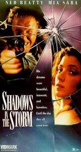 Постер к фильму «Тени в бурю»