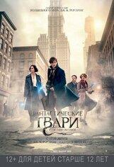 Постер к фильму «Фантастические твари и где они обитают»