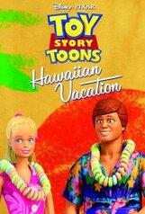 Постер к фильму «Гавайские каникулы»