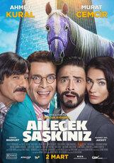 Постер к фильму «Ailecek Saskiniz »
