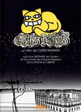 Постер к фильму «Коты в городе»