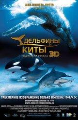 Постер к фильму «Дельфины и Киты 3D»