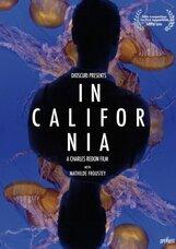 Постер к фильму «В Калифорнии»