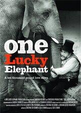 Постер к фильму «Счастливая слониха»