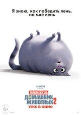 Постер к фильму «Тайная жизнь домашних животных 2»