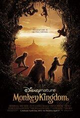 Постер к фильму «Королевство обезьян»