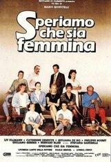 Постер к фильму «Надеемся, что будет девочка»