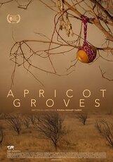 Постер к фильму «Абрикосовые рощи»