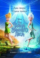 Постер к фильму «Феи: Тайна зимнего леса»