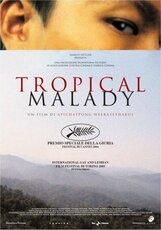 Постер к фильму «Тропическая болезнь»
