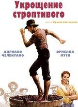 Постер к фильму «Укрощение строптивого»