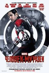Постер к фильму «Человек-муравей IMAX 3D»